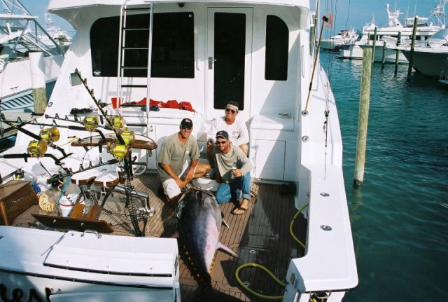 Tuna fishing on a guided trip on the clients boat